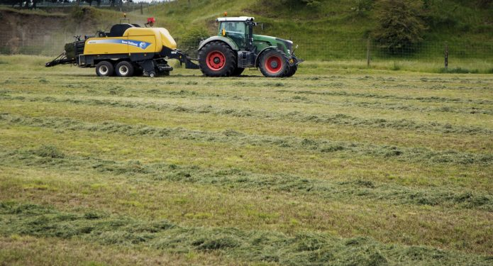 Improving Pasture with Hatuma Dicalcic Phosphate®