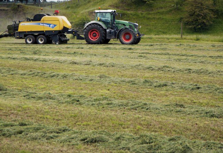 Improving Pasture with Hatuma Dicalcic Phosphate®