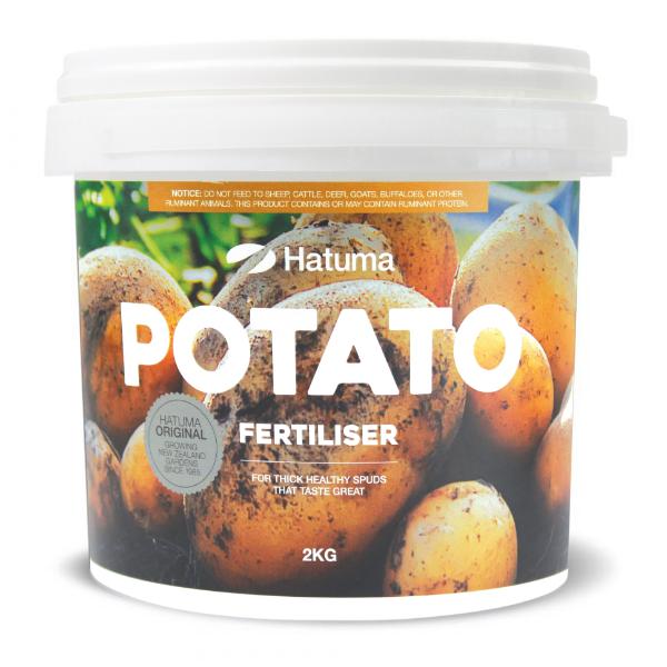 Hatuma potatoe